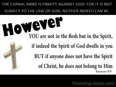 Romans 8:9 Not In The Flesh But In The Spirit (white)