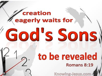 Romans-8-18 All Creation Waits For God's Sons To Be Revealed (white)