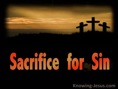 Sacrifice for Sin (devotional) (black) - Romans 8-3