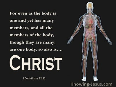 1 Corinthians 12:12 The Body Is One With Many Members So Also Christ (black)