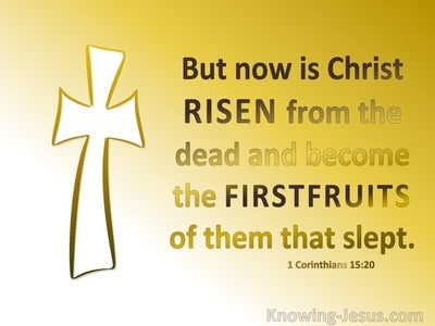 1 Corinthians 15:20 Christ Is Risen The Firstfuir Of Them That Slept (yellow)