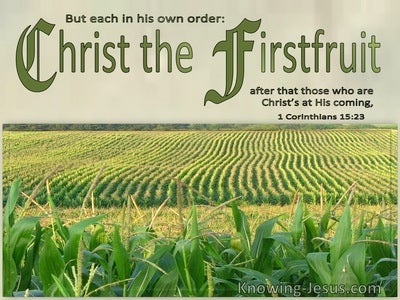 1 Corinthians 15:23 Each In Order : Christ The Firstfruit (sage)