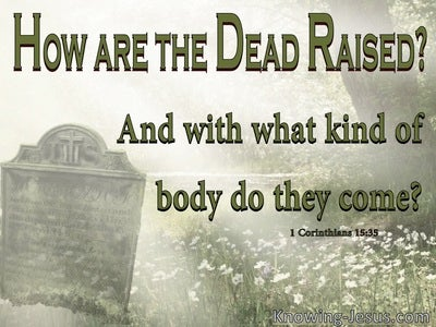1 Corinthians 15:35 How Are The Dead Raised (green)