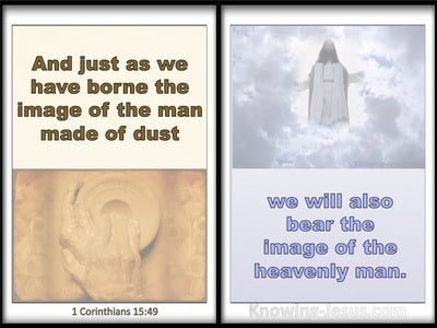1 Corinthians 15:49 We Bear The Image Of The Heavenly Man (white)