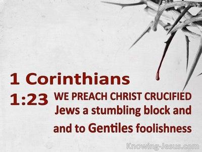 1 Corinthians 1:23 We Preach Christ Crucified (gray)
