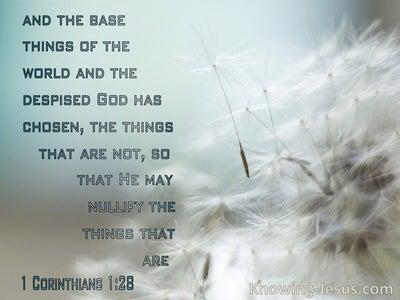 1 Corinthians 1:28 The Things Which Are Despised God Has Chosen (aqua)