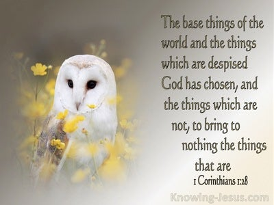 1 Corinthians 1:28 The Things Which Are Despised God Has Chosen (beige)