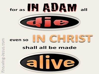 1 Corinthians 15:22 In Adam All Die, In Christ All Made Alive (beige)