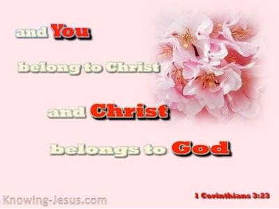 1 Corinthians 3:23 You Belong To Christ (red)