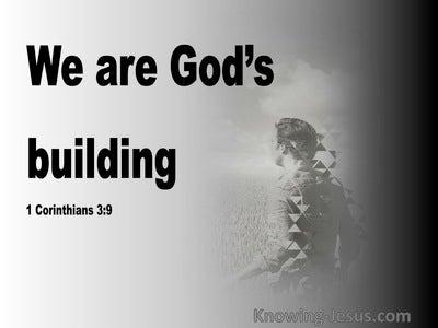 1 Corinthians 3:9 We Are God's Building (black)