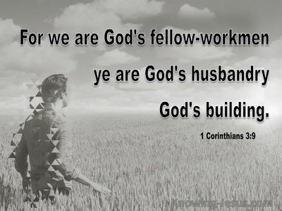 1 Corinthians 3:9 We Are Gods Building (gray)