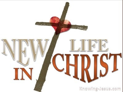 New Life In Christ (devotional) (white) - 2 Corinthians 5:17