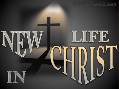 2 Corinthians 5:17 New Life In Christ (devotional)09-25 (gray)