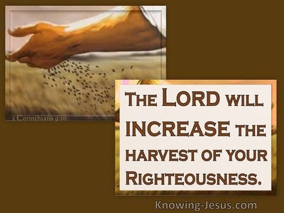 2 Corinthians 9:10 The Lord Supplies Seed. He Multiplies Your Sowing (brown)