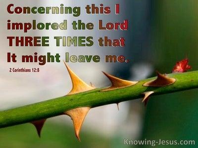 2 Corinthians 12:8  Three Times (green)