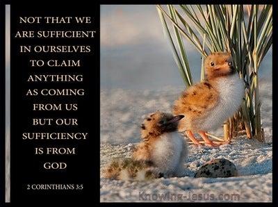 2 Corinthians 3:5 Sufficient in Christ (beige)