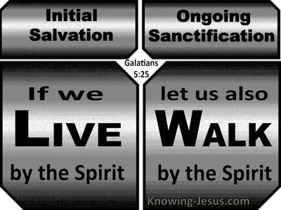 Galatians 5:25 Live And Walk By The Spirit (gray)
