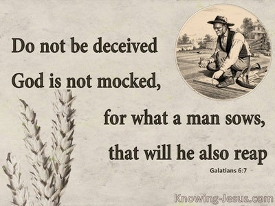 Galatians 6:7 What An Man Sows He Will Reap (beige)