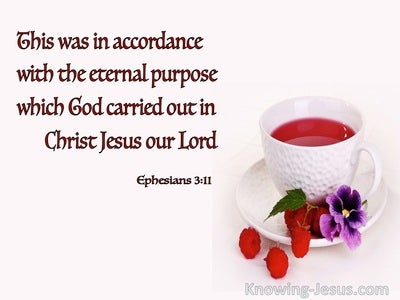 Ephesians 3:11 The Eternal Purpose Of God (white)