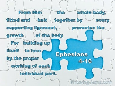 Ephesians 4:16 From Him the whole body, fitted and knit together (blue)