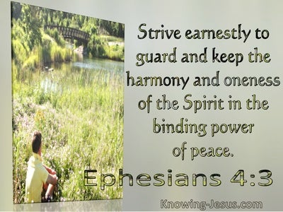Ephesians 4:3 Strive Earnestly To Guard And Keep The Harmony And Oneness Of The Spirit (windows)09:13