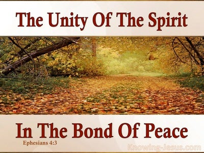 Ephesians 4:3 The Unity Of The Spirit (pink)