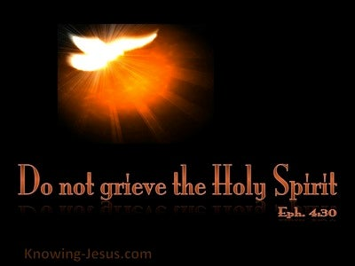 Ephesians 4:30 Do Not Grieve The Spirit (black)