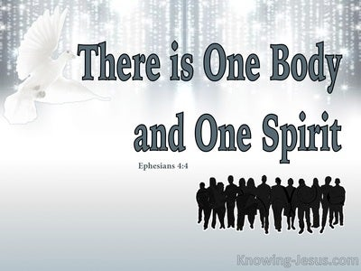 Ephesians 4:4 There Is One Body And One Spirit (gray)