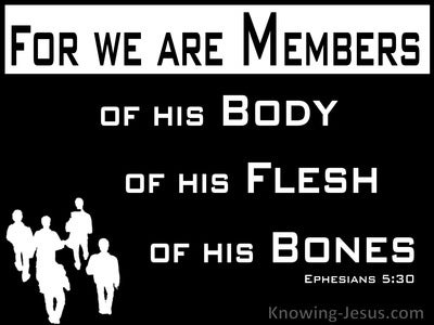 Ephesians 5:30 Members Of His Body And His Bones (black)