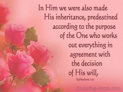 Ephesians 1:11 We Have Obtained An Inheritance, Having Been Predestined According To His Purpose (pink)