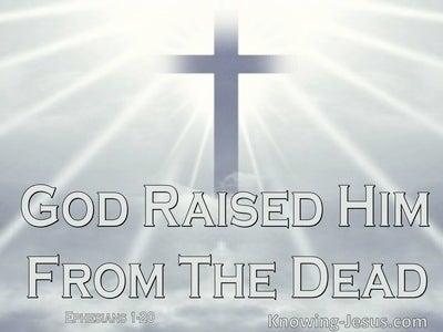 Ephesians 1:20 God Raised Him Up into Heavenly Places (white)