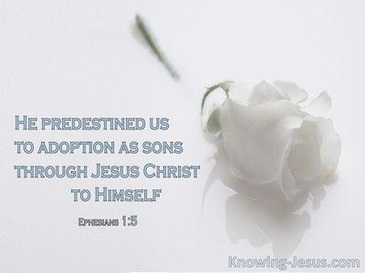 Ephesians 1:5 God Predestined Us To Adoption As Sons (white)