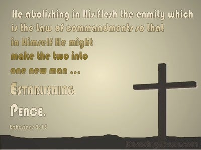Ephesians 2:15 He Made The Law Of No Effect (gold)