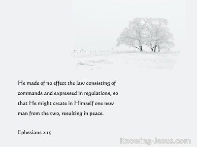 Ephesians 2:15 He Made The Law Of No Effect (white)