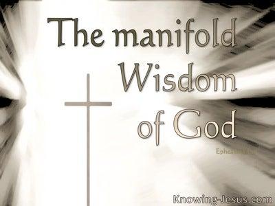 Ephesians 3:10  The Manifold Wisdom Of God (brown)