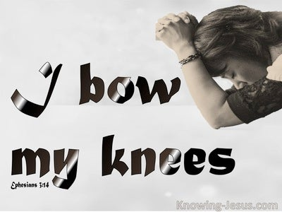 Ephesians 3:14 Bow The Knee Before The Father (gray)