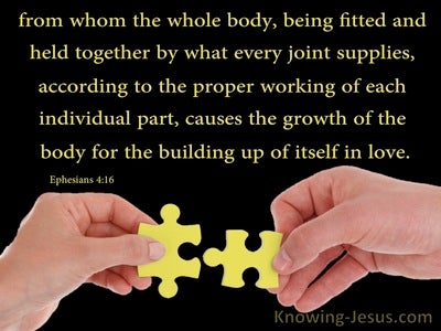 Ephesians 4:16 The Body Fitted And Held Together (yellow)