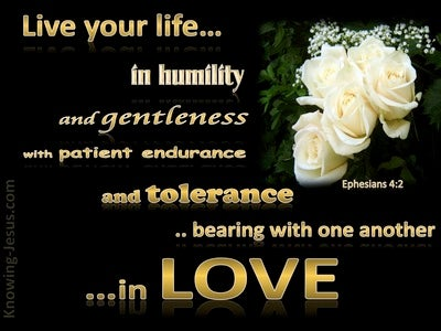 Ephesians 4:2 Live In Humility, Gentleness, Patience And Love (gold)