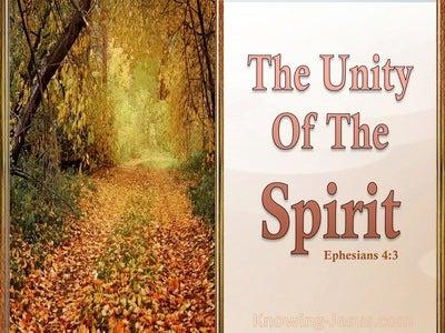 Ephesians 4:3 The Unity Of The Spirit (orange)