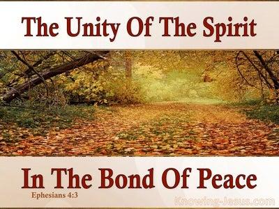 Ephesians 4:3 The Unity Of The Spirit (pink)