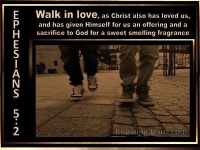 Ephesians 5:2 Walk In Love (brown)