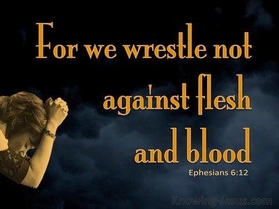 Ephesians 6:12 We Wrestle Not Against Flesh And Blood (orange)