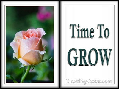 Time To Grow (devotional)