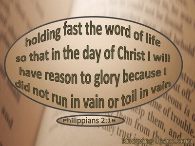 Philippians 2:16 Hold Fast The Word Of Life (beige)