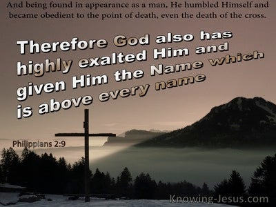 Philippians 2:9 God Highly Exaulted Him With The Name Above Every Name (brown)