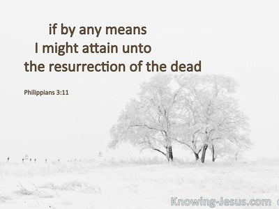 Philippians 3:11 Attain To The Resurrection Of The Dead (white)