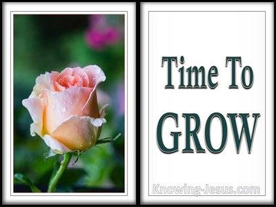 Philippians 1:6 Time To Grow (devotional)03:18 (white)