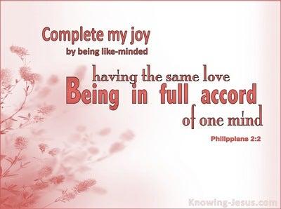 Philippians 2:2 Complete My Joy (pink)