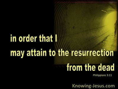 Philippians 3:11 Attain To The Resurrection Of The Dead (black)