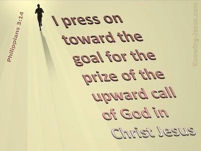 Image result for image I press on toward the goal for the prize""